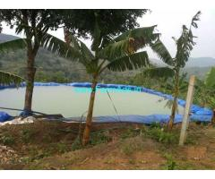 4.9 Acres Farm Land Sale at Attappadi