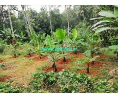 26 Cents Farm Land for Sale at Kallissery