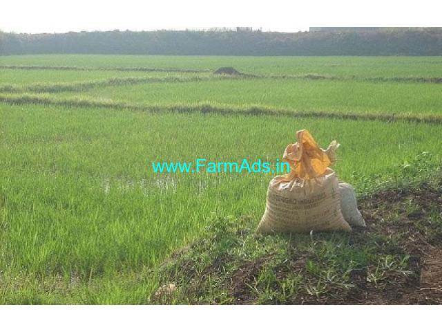 50 Cents Farm Land sale at Palakkal