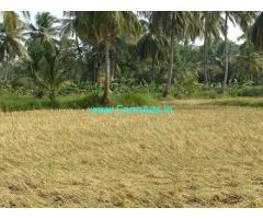 4 Acres Organic Farm For Lease Near Chittur Puzha River