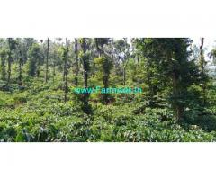 2 Acre Agriculture Land for Sale near Mananthavady