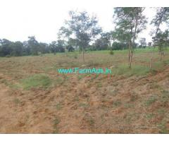 15 Acres Agriculture Land for Sale near Denkanikottai Irudumukottai Road