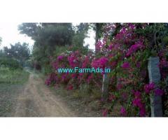 0.25 Acre Farm Plot for Sale near Little England