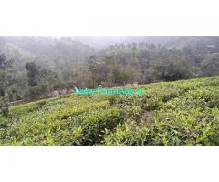 20 Cents Farm Plot for Sale at Vagamon