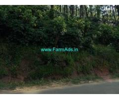 Well Maintained 18 Acres Coffee Estate for Sale at Baggana Mane Road