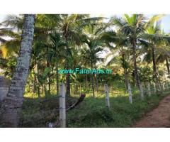 7 Acres Agriculture Land for Sale at Markuli