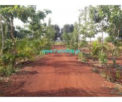 16 Acres Farm Land for Sale at Mandapalli