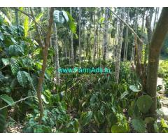 Coffee Estate for sale in Chikmagalur. 16 KM from City