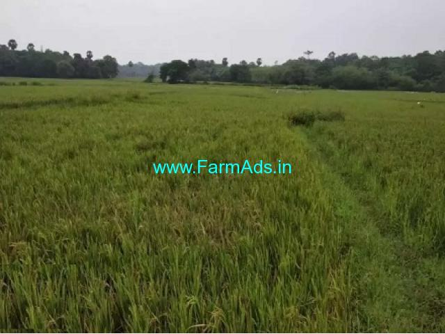1.5 Acres Agriculture Land for Sale at Kallekad chamakkad colony