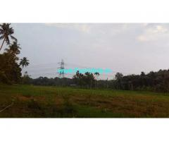 56 Cent Agriculture Land For Sale in Pulluvazhy,Near MC Road