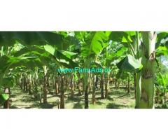 92 Cents Agriculture Land for Sale in Paliyekkara Toll Plaza