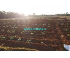 26 Acres Agriculture land for sale near Puvunjur, 12 kms from ECR-koovathur