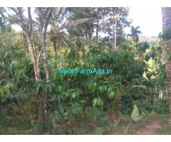 11 Acre Agriculture Land for Sale in Mananthavady