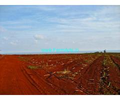 25 Acres Agriculture Land for Sale at Balanagar