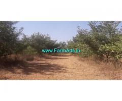 12 Acres Mango Farm Land for Sale near Misrikoti