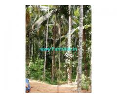 3 Acres Agriculture Land for Sale at Peraje