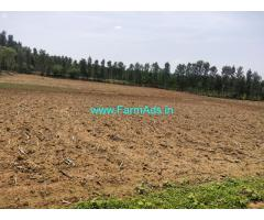 5 Acres Farm Land for sale at Hassan district . Hassan Belur between