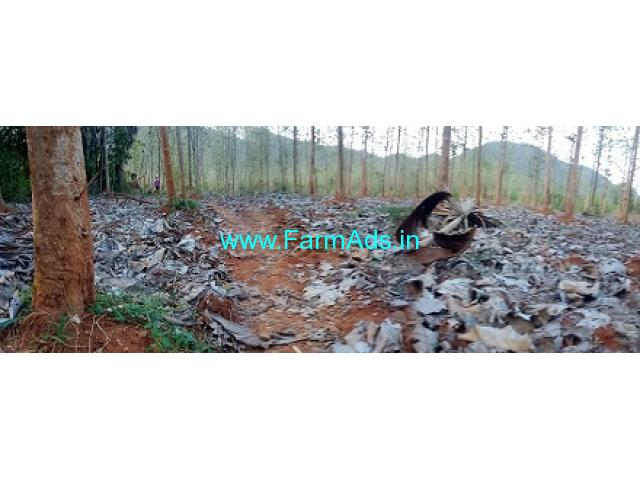 10 Acres Agriculture Land for Sale at Tatipudi