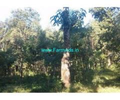5 Acres Agriculture Land for Sale at Sulthan Bathery