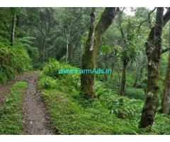7 Acres Cardamom Estate for sale near Meppadi,Lantren Stay Resort