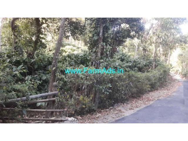 2 Acres Robusta Coffee Estate for sale near Madikeri