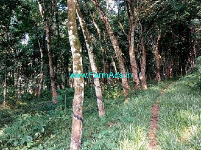 30 Cents Rubber Land for Sale at Palanilkunnathil Colony, Mottakottukala