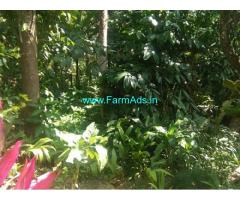 50 Cents Farm land for Sale at Parackal,Upputhara