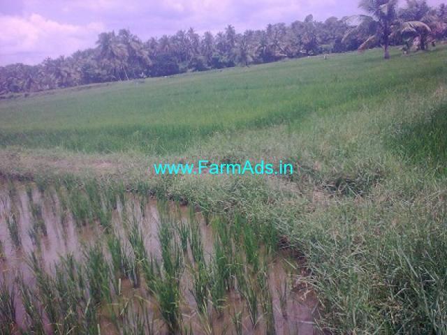 3 Acres Farm Land for Sale at Kunnakad, Peruvamba