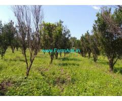 3.92 Acres Farm Land Sale on Katol Narkhed Road