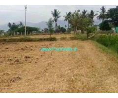 2.39 Acres Farm Land for Sale at Chandragiri,Sholka International School