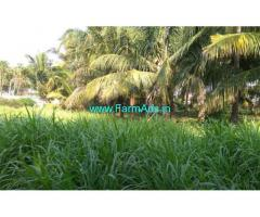 1.70 Acre Coconut with agriculture land sale gudimangalam
