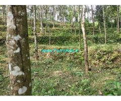 1.13 Acres Rubber Estate for Sale at Thottakkadu