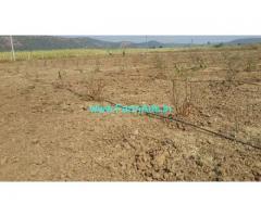 7.37 Acres Agriculture Land for Sale in Narsapuram