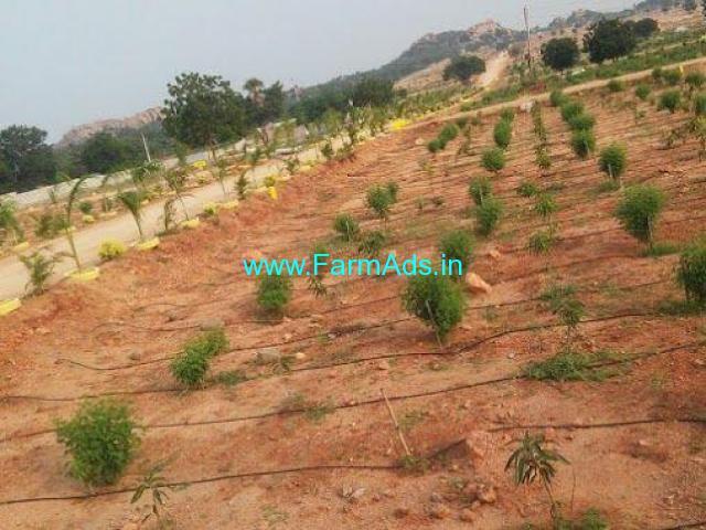 300 sq yards Farm Land for Sale in Bommalaramarm, Keesara