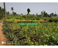 43 Cents Agriculture Land for Sale at Burrilanka, NH16