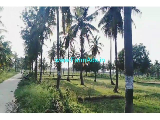 32 gunta coconut farm land just 3km from Bangalore - Mysore highway,