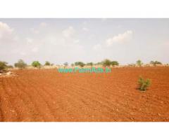 100 acres agriculture land for sale at Peddathippasamudram Mandal, Chitoor.