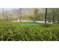 40 Acres Tea state for Sale in Ooty
