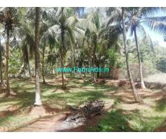4.50 Acres Coconut Farm Land for Sale in Kozhinjampara