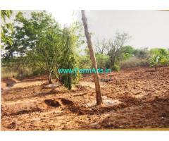 Quarter acre farm land at Jain farm
