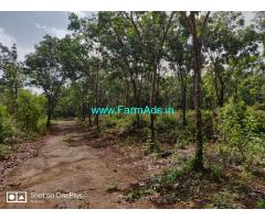 7.12 Acre Patta land and  5 Acre Kumki Land for sale in Perdoor