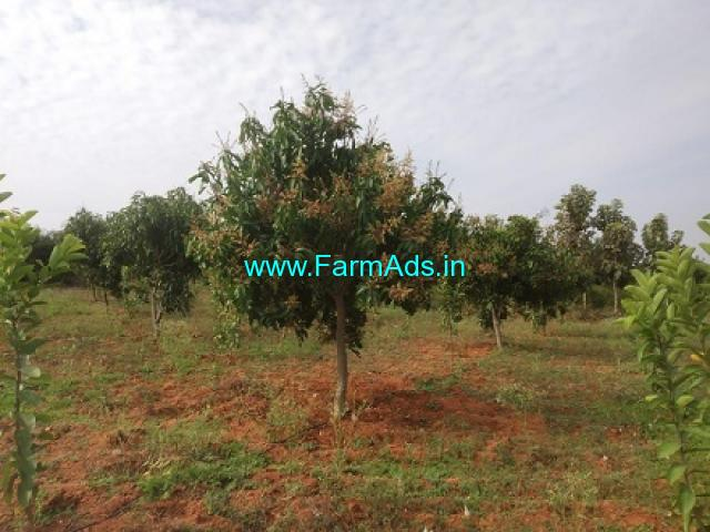 Well Developed 31 Acres Farm Land for Sale  Chandragiri