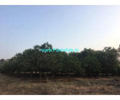 4.30 Acres Agriculture Land for Sale at Jaggayyapeta,Mangollu Road