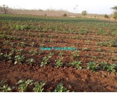 10 Acres Agriculture land for Sale at S.N.padu Mandal,Enikapadu