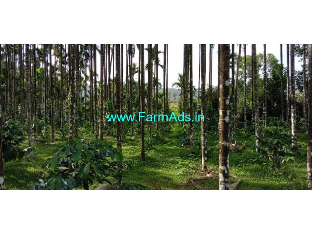 16 acres Robasta Coffee Estate For sale 45km from Mudigere