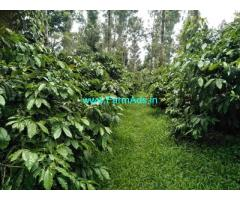 10 acre Robastaa coffee estate for sale, 14km from Mudigere