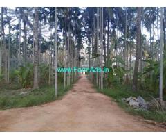 110 Guntas Well Maintained agri farm land for near Nittur Tumkur dist.