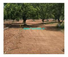 Low Cost 21 Cents Agriculture land for Sale in Krishnaraopalem