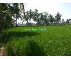 5 Acres Agriculture Land for Sale at Seela