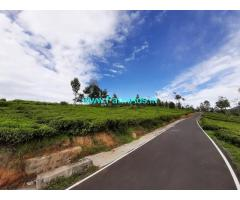 5 Acres Tea Estate for Sale near Ooty